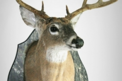deer-camo-plaque